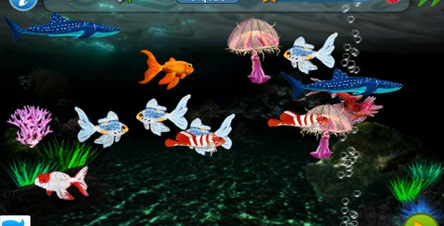 tapfish1
