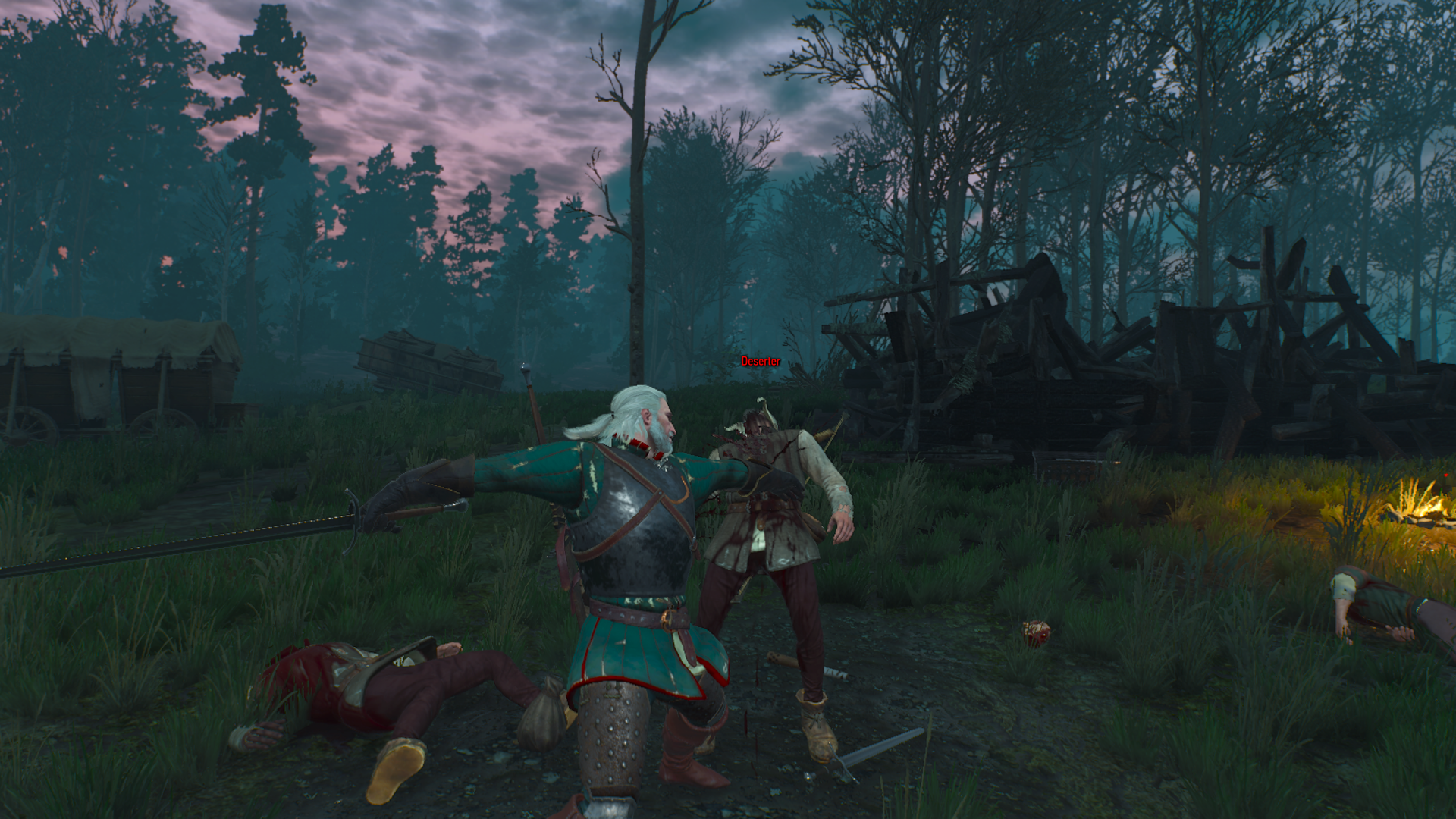 The Witcher 3 Wild Hunt (3)