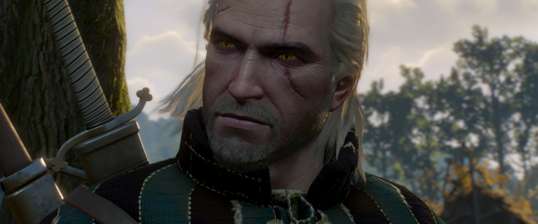 The Witcher 3 Wild Hunt (5)