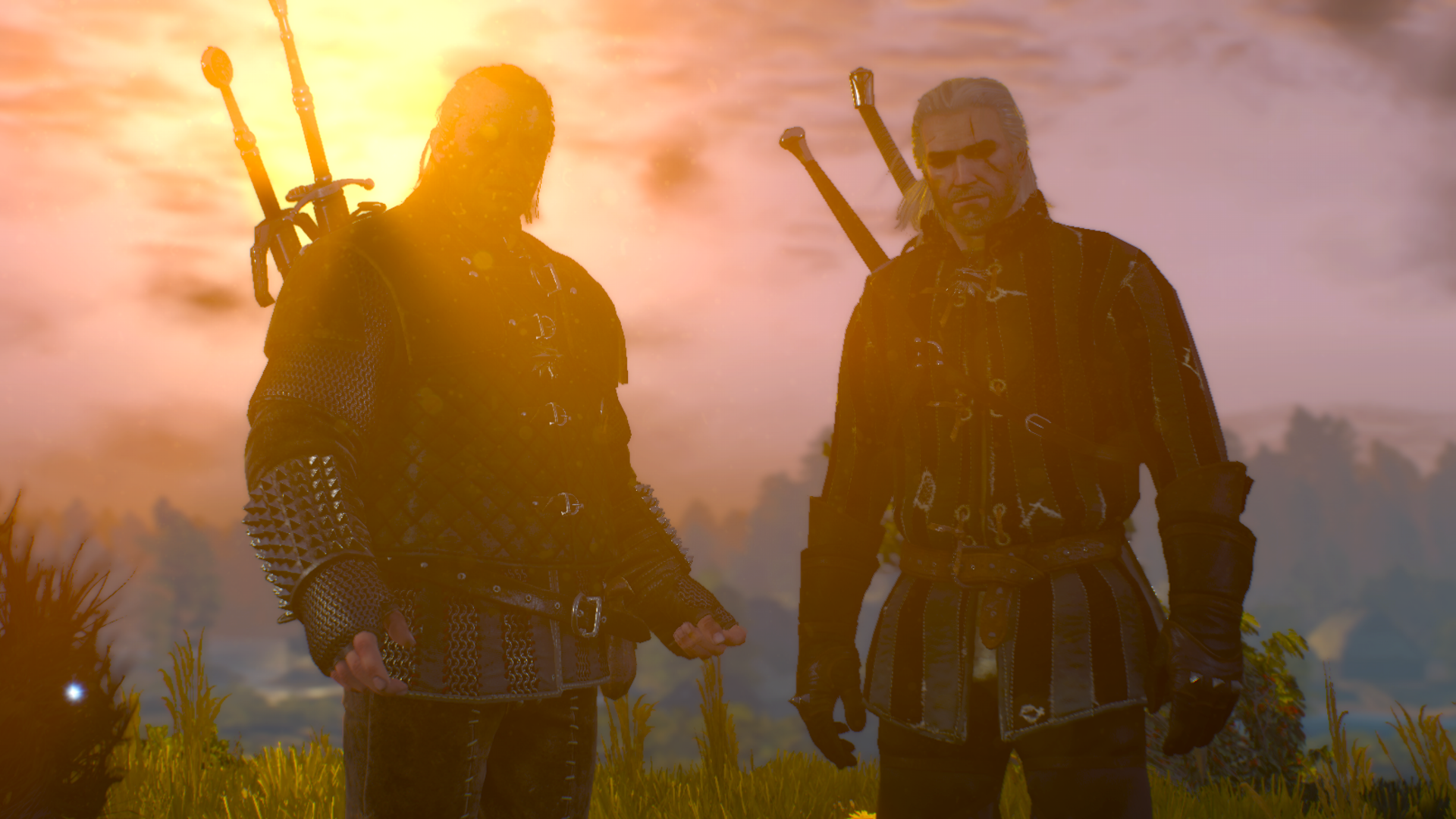 The Witcher 3 Wild Hunt Geralt and Vesemir