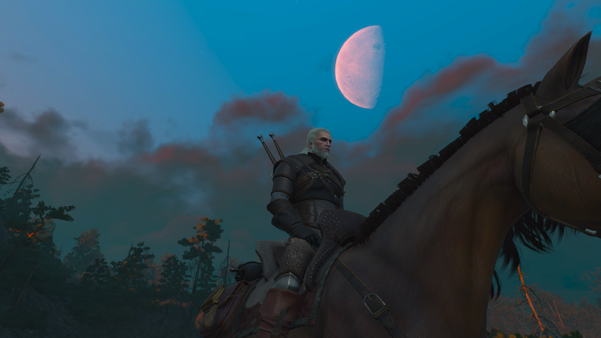 The Witcher 3 Wild Hunt Moon